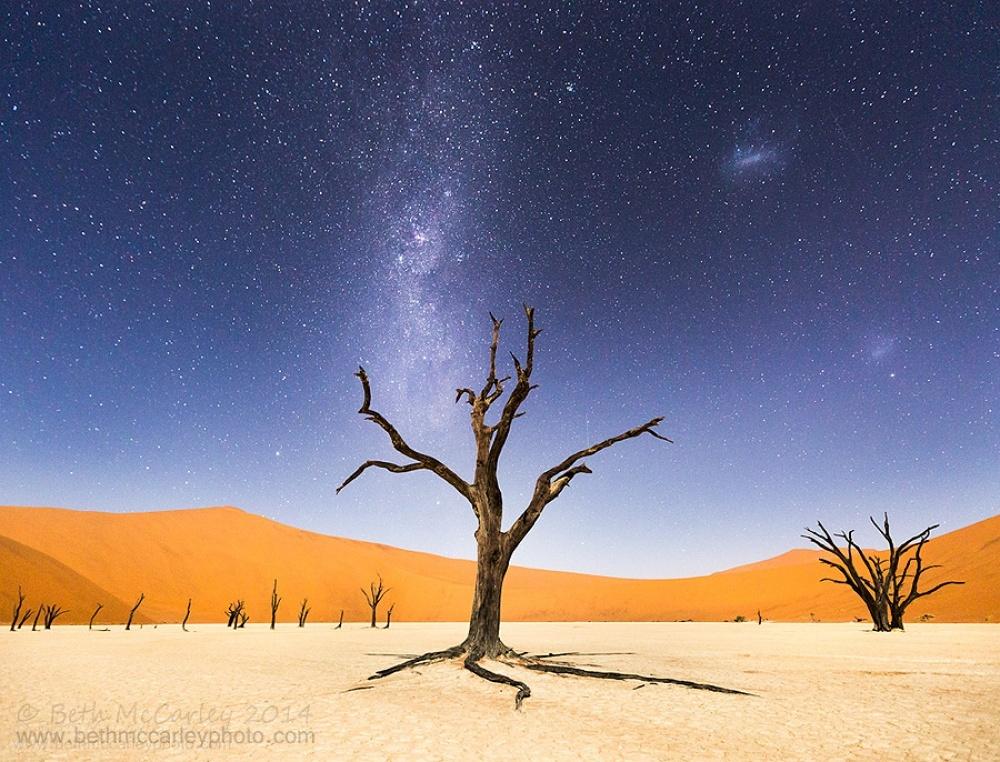 lanscape desert