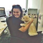 Când clienții vin cu animalul de companie la biroul tău.